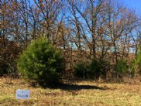 5.6 Acres At Fiery Fork Ridge