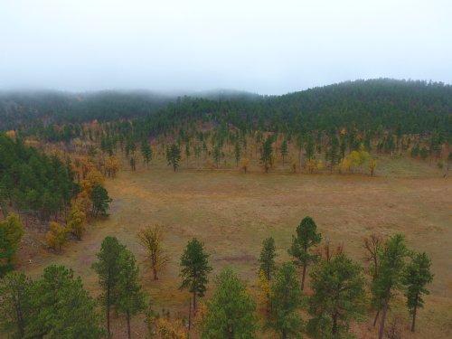 Black Hills Cosmos Land : Rapid City : Pennington County : South Dakota