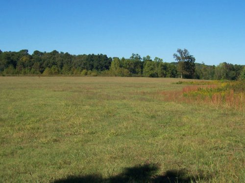 Commercial Property : Gainesville : Hall County : Georgia