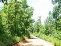 8.39 Acre Green Mountain Ranch