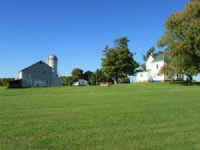 84 Acres Farm Tillable Farmland