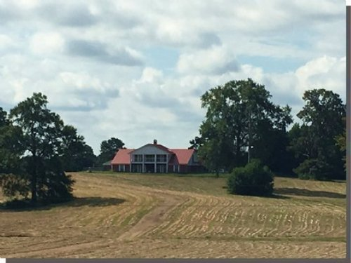 256 Acres W/ Two Homes In Holmes Co : Pickens : Holmes County : Mississippi