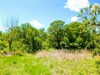 8.52 Acre Saddlebrook Ranch