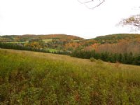 45 Acres In Catskill Mountains