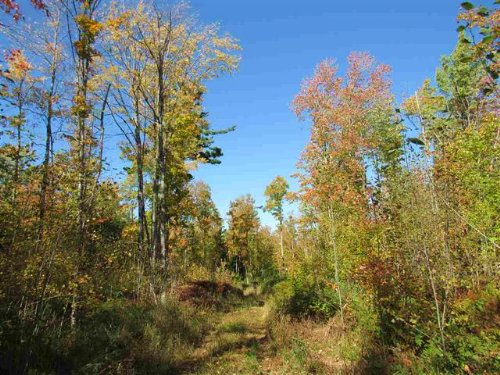 20 Ac Power Dam Rd, Mls 1098203 : Lanse : Baraga County : Michigan