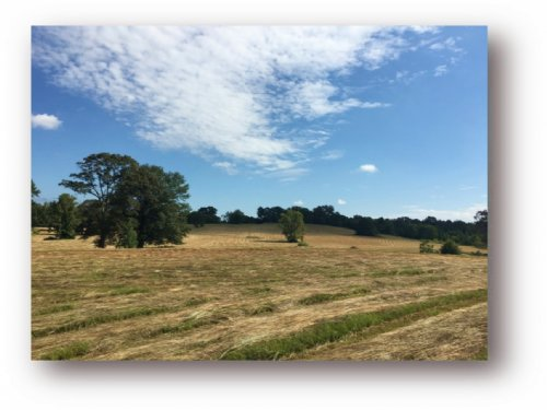 236 Acres W/ Home In Holmes County : Pickens : Holmes County : Mississippi