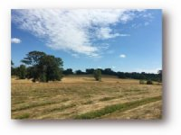 236.00 Acres Residential Land