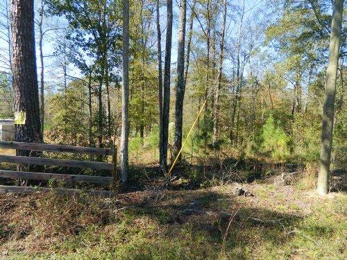 Perfect Hunting Property : Crawfordville : Taliaferro County : Georgia