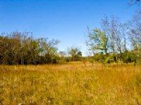 12.3 Acre Saddlebrook Ranch