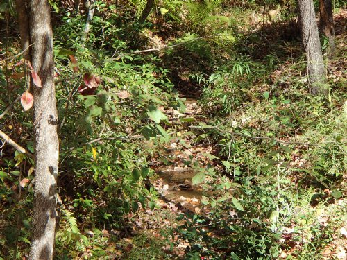 18 Acres, Views, Pasture : Mineral Bluff : Fannin County : Georgia