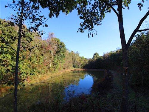 Murphy Remy Rd - 40 Acres : McArthur : Vinton County : Ohio