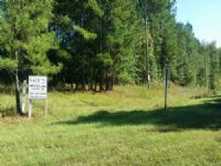 81 Ac. Commercial Tract & Utilities