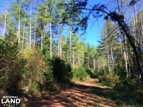 Lake James Hunting And Timber Tract : Morganton : Burke County : North Carolina