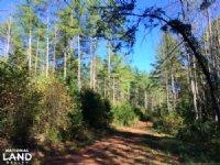 Lake James Hunting And Timber Tract