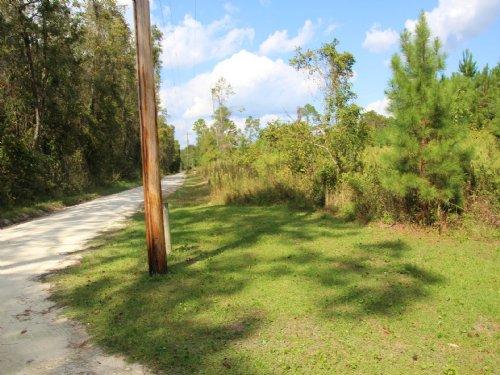 21.02 Acres In Earleton : Earleton : Alachua County : Florida