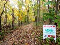 28 +/- Acres Land In Bloomsburg