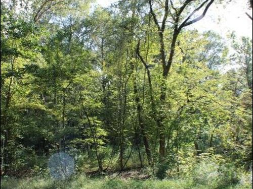 5 Acres In Hinds County On East Flo : Terry : Hinds County : Mississippi