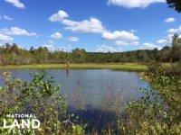 Little Mulberry Creek Rec./Hunting : Clanton : Chilton County : Alabama