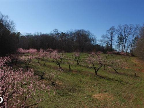 Anderson Homesite And Mini Farm : Anderson County : South Carolina