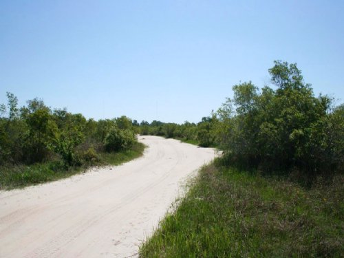 South Charlotte Acreage : North Fort Myers : Charlotte County : Florida