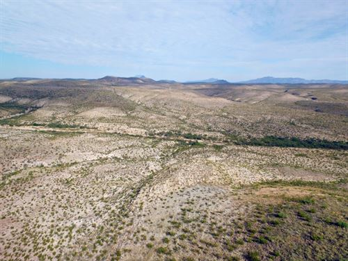 329 Acre Hunting Ranch : Terlingua : Brewster County : Texas