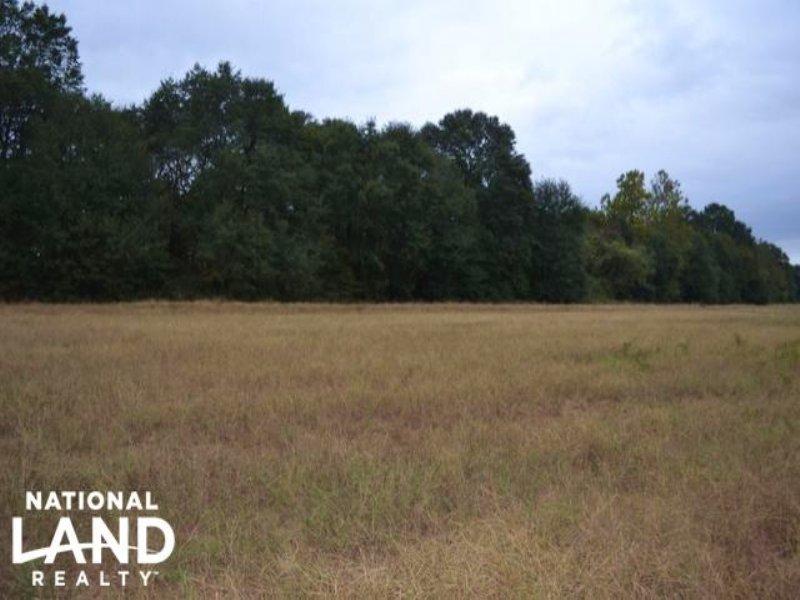 520 Acre Recreational Farm on Ba : Star City : Lincoln County : Arkansas
