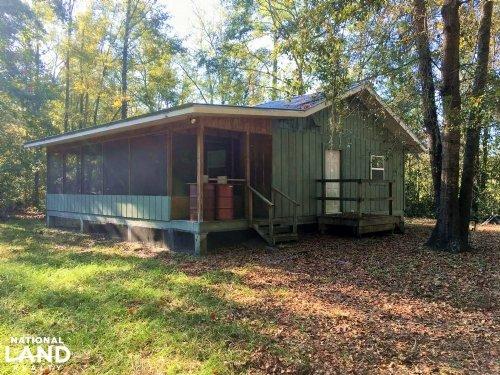 Jasper Small Hunting & Timber Estat : Pineland : Jasper County : South Carolina