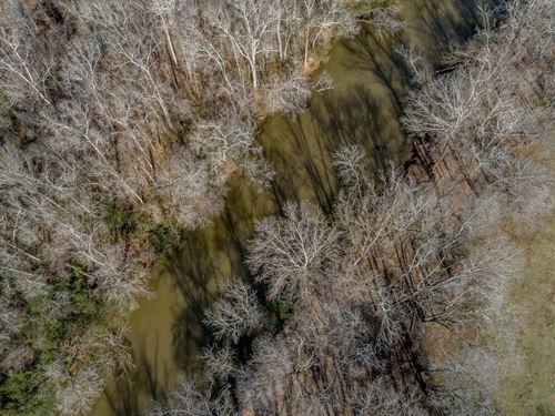 Yellow River Timberlands : Covington : Newton County : Georgia
