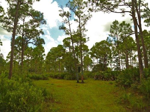 Hunter's Paradise : Okeechobee : Florida