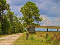 Dark Hammock Hunting Retreat : Okeechobee : Okeechobee County : Florida