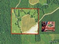 100.00 Acres Ranch Land, Pasture
