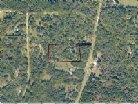 Wooded Acreage With Double Wide : Lake City : Columbia County : Florida