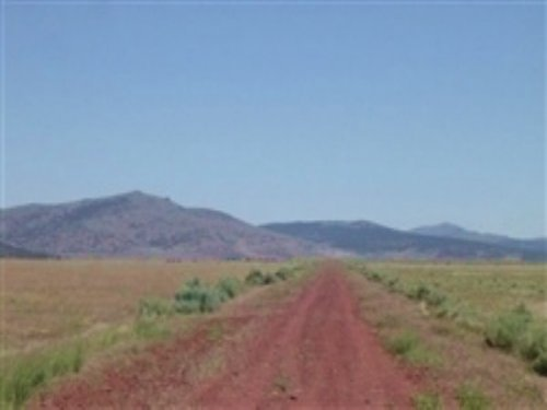 20.20 Acres Moon Valley Ranch : Susanville : Lassen County : California