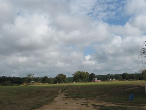 Golden Pines - 91 Acres : Prentiss : Jefferson Davis County : Mississippi