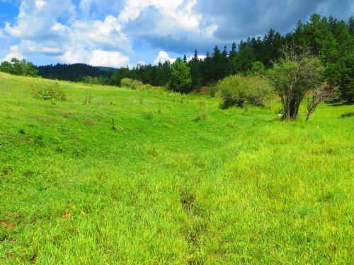 # 24 Aspen Rose Ranch : Weston : Las Animas County : Colorado