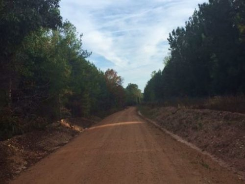 100+/- Ac Near Auburn : Camp Hill : Lee County : Alabama