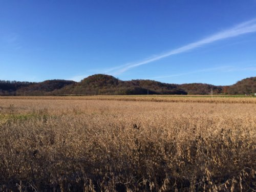 47+/- Acres On Mill Creek : Muscoda : Richland County : Wisconsin