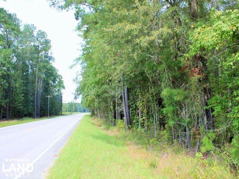 Country Estate OR Mini Farm Tract : Branchville : Orangeburg County : South Carolina