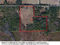 31.4 Acres In Meadow And Woods : Alachua : Alachua County : Florida