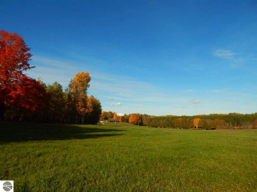 Exceptional Hunting On 1280 Acres : Onaway : Presque Isle County : Michigan