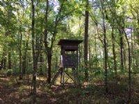 Potato Creek Land/Recreation Tract : Haddock : Jones County : Georgia