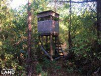 Hickory Hill Hunting & Timber Tract