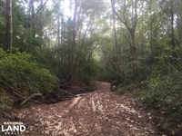 Noland Creek Homesite, Lot 11 : Prattville : Autauga County : Alabama
