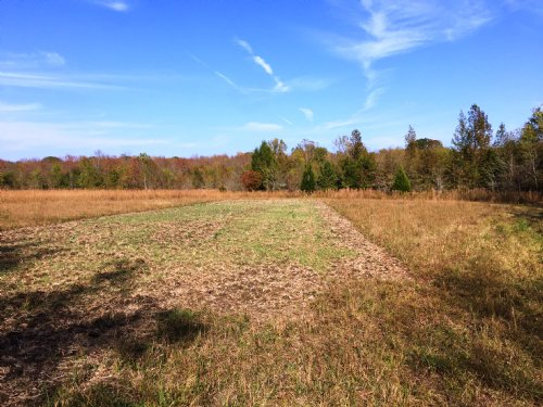 Foggy Hollow Estate Lot 6c : Pike Road : Montgomery County : Alabama