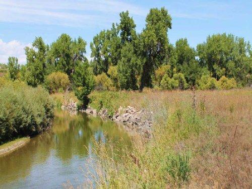 St. Vrain River Retreat : Longmont : Weld County : Colorado