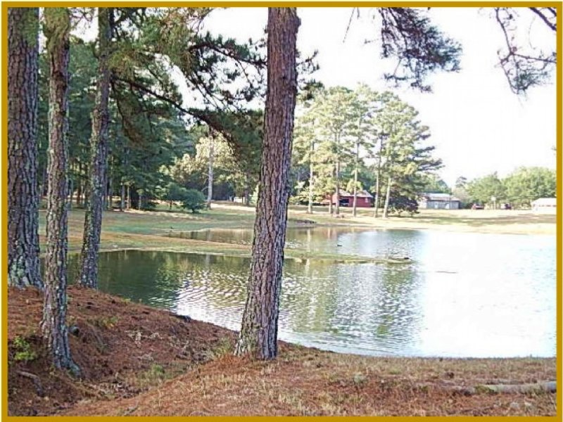 126.5 Acres With Cabin In Madison C : Canton : Madison County : Mississippi