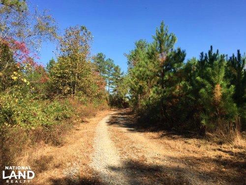 Big Ridge Road East : Talking Rock : Pickens County : Georgia