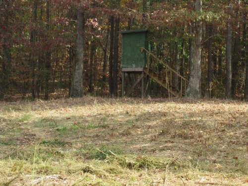 Deer Hunters Paradise : Cullman County : Alabama