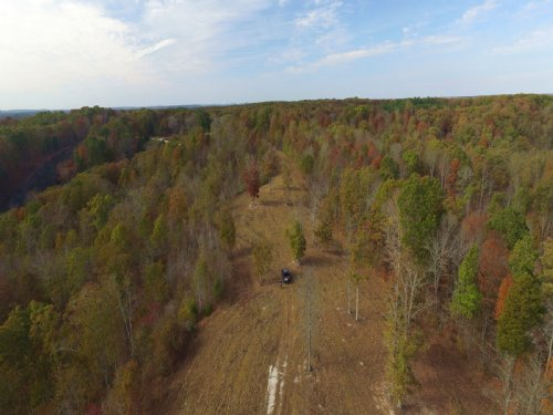 56.6 Acre Recreational Tract : Waverly : Humphreys County : Tennessee