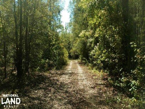 Cochgalechee Creek Tract : Phenix City : Russell County : Alabama